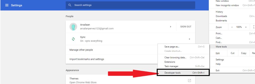 screenshot of the Developer tool option