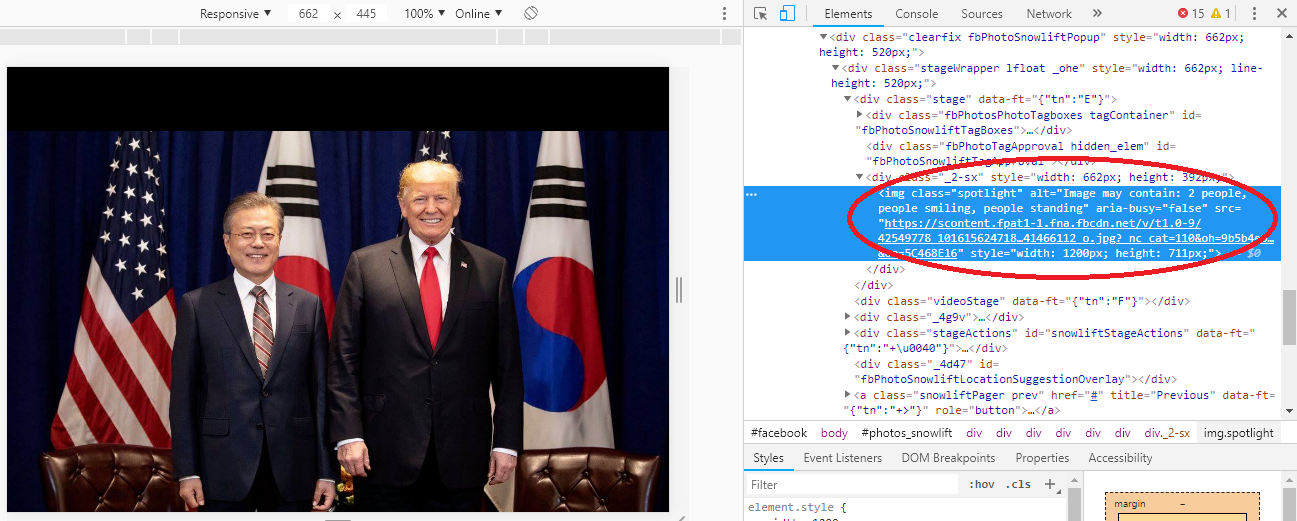 Chrome Dev Tool showing image information