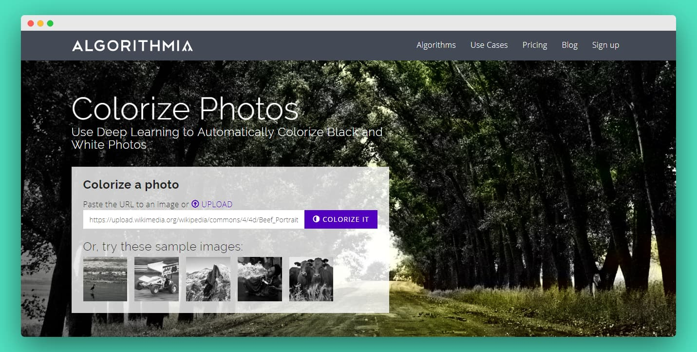Algorithmia Web App Colorize Photo Section Screenshot